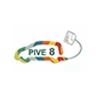 Programa de Incentivos al Vehículo Eficiente (PIVE-8)